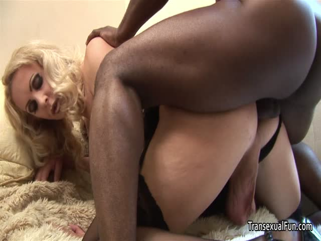 Ebony shemale and white submissive